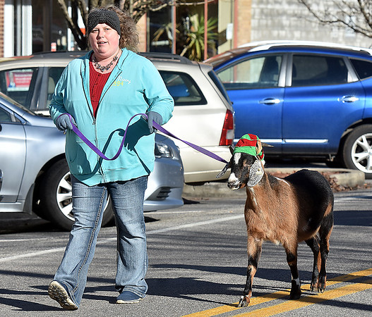(Brad Davis/The Register-Herald) Melissa McCoy guides festive goat Fiona as they make their way along Main Street in Sophia during the town's annual Christmas Parade Saturday afternoon.