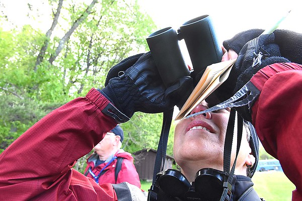 Rebecca Atherton, of the National Park Service, views birds during a Guided birding tour on the  during the New River Birding and Nature Festival.<br /> (Rick Barbero/The Register-Herald)