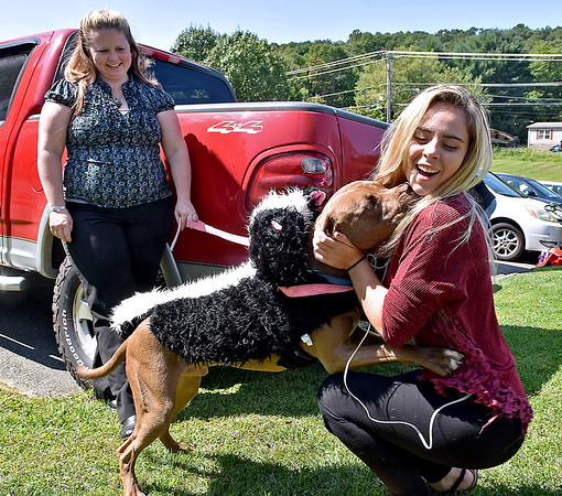 (Brad Davis/The Register-Herald) Erica Jones' pit bull Rider, dressed up as a giant skunk, is really excited to meet Jamie Howell, right, prior to the Kids Classic Dazzling Dog Show Sunday afternoon at the Youth Museum.