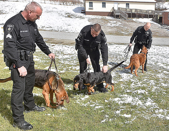 (Brad Davis/The Register-Herald) From left, Sgt. W.R. Killen handles Bella, Cpl. R.L. Talley handles Smokey and Sgt. R.R. White handles Bodi as Raleigh County Sheriffs introduce their four new K-9 units during a media visit to their Eisenhower Drive station Wednesday afternoon.