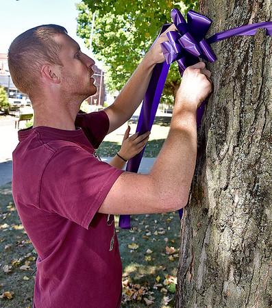 (Brad Davis/The Register-Herald) Women's Resource Center volunteer Howard Lemon ties a purple ribbon to a tree around town with the help of girlfriend Lauren Fowler (hidden in background) for domestic violence awareness month Sunday afternoon in uptown Beckley. Bessie's Floral Designs in Oak Hill and Flowers by Nancy in Beckley donated the ribbons and materials to the Women's Resource Center.