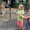 (Brad Davis/The Register-Herald) Eight-year-olds Ella Butler and Dakota Fisher look over at a family member snapping photos as they feed a chunk of chicken to Kyla the tiger after watching the Tiger Encounter show at the State Fair Friday afternoon in Fairlea.