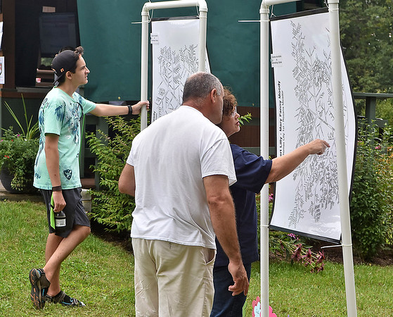 (Brad Davis/The Register-Herald) Attendees look over what have become vastly elaborate family trees through years of genealogy research that hang on display during the annual Lilly Family Reunion Saturday afternoon near Ghent.