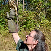 (Brad Davis/The Register-Herald) Three Rivers Avian Center Executive Director Wendy Perrone releases a rehabilitated red shouldered hawk back into the wild Wednesday afternoon, one of around 200-250 patients the center will see each year.