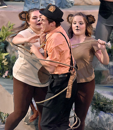 (Brad Davis/The Register-Herald) Shere Khan, played by Kevin Overbaugh, is tied up by Mowgli's jungle animal friends during a scene from Theatre West Virginia'a The Jungle Book Kids July 22 at Grandview Park's Cliffside Amphitheatre.