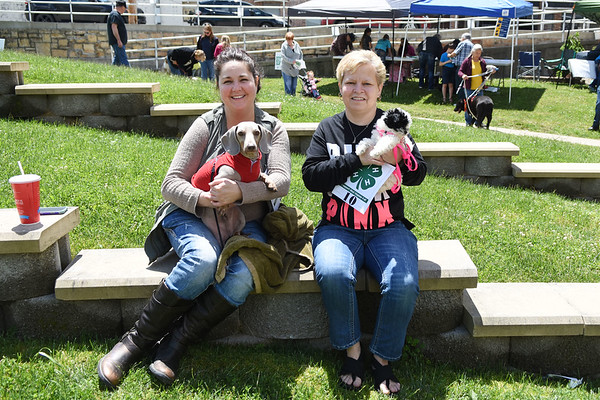 """Angela Reedy, left, with her dog, """"Harley,"""" and Vanessa Walker, with her dog """"Lilly Grace,"""" both from Oak Hill wait to compete in the 4H-Fayette Pet Show in Oak Hill on Saturday. (Chris Jackson/The Register-Herald)"""