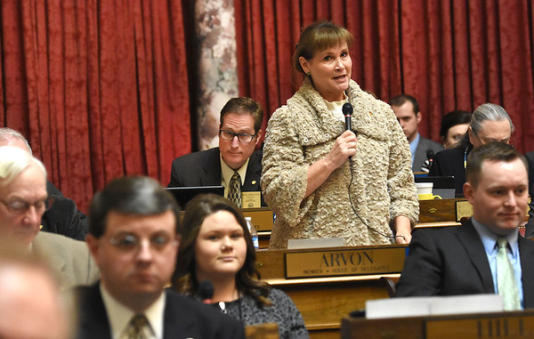 Lynne Arvone, R-Raleigh, speaks during the legislative session Wednesday afternoon at the State Capitol in Charleston.<br /> (Rick Barbero/The Registr-Herald)
