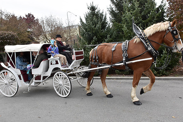 (Brad Davis/The Register-Herald) Seven-year-olds Isabella Morris, left, and Adrianna Frazer ride at the front with driver Jaime Rodes-Carola as trusty horse Lexi pulls them and others along on a carriage ride during the Lewisburg Holiday Festival Saturday afternoon. Rodes Farms provided the rides.