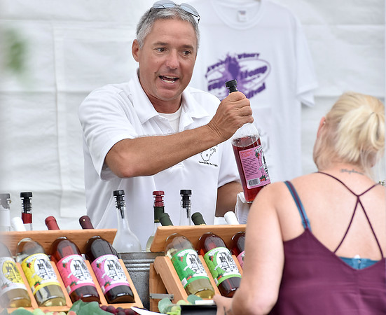 (Brad Davis/The Register-Herald) Winery hand Brad Anderson describes their different wine types to sampling patrons at the Kirkwood Wine Festival Sunday afternoon in Summersville.