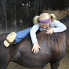 Emma Sparks, 9, climbs on her friends mini show horse at the State Fair of West Virginia Tuesday. (Jenny Harnish/The Register-Herald)