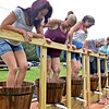 (Brad Davis/The Register-Herald) Participants smash away to see who can produce the most juice before time runs out during the grape stomp competition at the Kirkwood Wine Festival Sunday afternoon in Summersville.