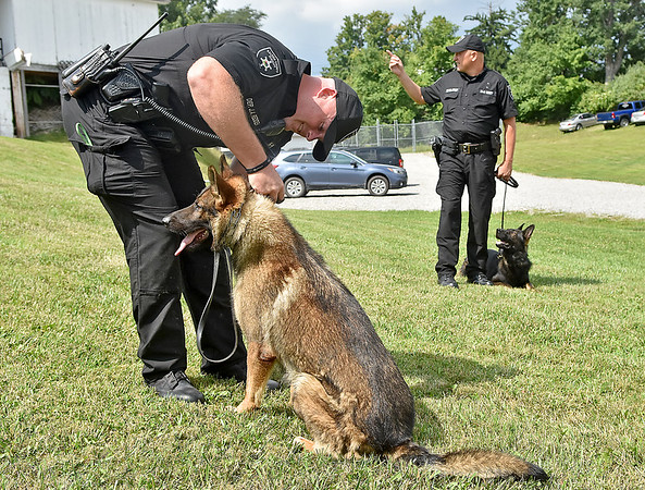 """(Brad Davis/The Register-Herald) Lt. Jason Redden, left, handles Cody while Sgt. Bobby Stump handles Clutch, two of three new K-9 members to join the force at the Raleigh County Sheriff's Office, during a """"meet and greet"""" with local media Thursday afternoon. Both dogs are serving as narcotics, apprehension and tracking dogs while a third dog, a 9-week-old bloodhound puppy named Trigger, will be ready for active duty in a few months."""