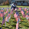 (Brad Davis/The Register-Herald) Jill Heine locates the flag of late veteran Marvin Dorsey, one of hundreds of other vets past and present honored within the field of flags prior to the start of the 5th Annual Healing Fields Ceremony Sunday at the Raleigh County Veterans Museum. Dorsey passed away just last week.