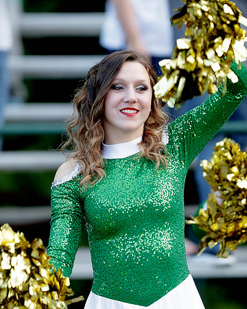 A cheerleader helps lift the spirits of the Fayetteville fans. Chad Foreman for the Register-Herlad.