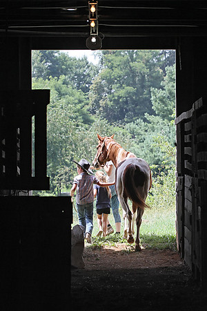 A family leads their horse out of the stable at the State Fair of West Virginia Thursday. (Jenny Harnish/The Register-Herald)