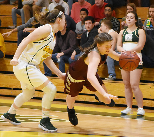 Woodrow Wilson's Elizabeth Cadle (24) is tripped up by Greenbrier East's Abby Bartenslager (11) during the first half of their basketball sectional championship game in Lewisburg Friday. (Chris Jackson/The Register-Herald)