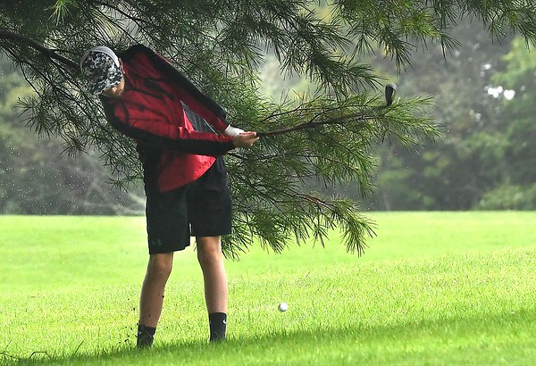 Peyton Meadows, of Pikeview, found tree trouble on the par 4, 12 hole during the Class AA Region 3 golf tournament held at Grandview Country Club in Beaver.<br /> (Rick Barbero/The Register-Herald)
