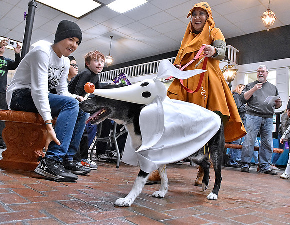 (Brad Davis/The Register-Herald) Spectators marvel as Beaver resident Tina Gyovai walks her dog Fluffy, dressed up as Zero from The Nightmare Before Christmas films, in front of the judges during the costume contest portion of the Humane Society of Raleigh County's Howloween event Saturday afternoon inside the Beckley Plaza Mall.