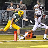 (Brad Davis/The Register-Herald) Woodrow Wilson's Micah Hancock gets into the endzone for another score as Greenbrier East's Clay Jackson can't catch him Friday night in Fairlea.