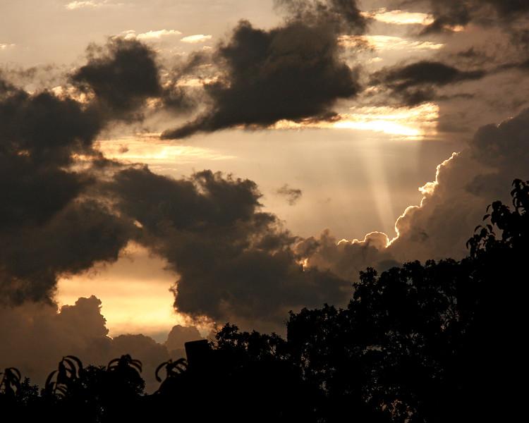 Evening Sunbeam