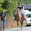 Parade participants ride a horse during the Labor Day Parade in Pineville on Monday. (Chris Jackson/The Register-Herald)