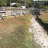 Creek that runs through Old Mill Farm off of Old Mill Road in Beckley that fills a watering hole for livestock is dried up. Tim Martin, owner, says he's never seen it this bad and it's created some problems watering and feeding his livestock. He's been using a water hose and buckets of water to fill his troughs and purchasing extra hay for feeding.<br /> (Rick Barbero/The Register-Herald)