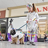 (Brad Davis/The Register-Herald) Four-year-old Beckley resident Bella Graham guides her dog Luke, both dressed up as unicorns, before a cast of local celebrity judges as they participate in the Humane Society of Raleigh County's Howl-o-Ween pet costume contest Saturday afternoon inside the Beckley Plaza Mall.