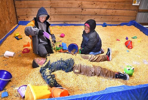 Kirk Dean, left and Zanique Tabb, bury Draven Bennett in kernels the corn in the corn box at the Okes Family Farm in Cool Ridge.<br /> (Rick Barbero/The Register-Herald)