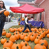 (Brad Davis/The Register-Herald) Beckley residents Ashley Stewart and her seven-year-old son Mason search a sea pumpkins for the perfect ones during Burlington United Methodist Family Services' annual Pumpkin Harvest Festival Sunday afternoon.