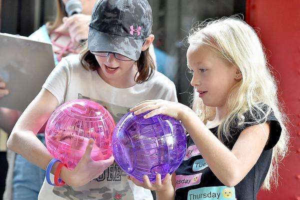 (Brad Davis/The Register-Herald) Skylar Bailey, 10, left, and Zeva Calloway, 8, win hamsters to take home in during Kids Classic Sunday.