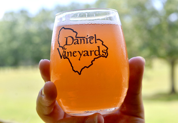 (Brad Davis/The Register-Herald) The pink/orange tone of Dobra Zupas' August Daze, a German style strawberry-rhubarb wheat brew, pops out when put up against the Daniel Vineyards backdrop in one of their special glasses as Chad Daniel holds it up in the light during the vineyard's 2nd Annual Craft Beverage Festival Saturday afternoon in Crab Orchard. The usual wine tasting opportunities from makers across the state were accompanied by the local beer area, which featured craft beers from area breweries like Dobra Zupas, Big Timber, Weathered Ground and others.