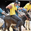 (Brad Davis/The Register-Herald) Hunter Coffman avoids defenders as he trots up the court during a donkey basketball tournament to benefit the Raleigh County Horseman's Association Sunday afternoon at the Beckley-Raleigh County Convention Center. The rules are simple, as it's basically standard basketball, but you must be on your donkey when taking a shot. You can dismount to pick up a loose ball or move around the court quicker, but you must have your donkey in tow at all times when not riding it. RCHA hopes to have a few more of these events in the future.