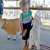 (Brad Davis/The Register-Herald) Three-year-old Hinton resident Luke Wilson learns how to brush and care for different farm farm animals inside the State Fair's Agriculture Pavilion Sunday afternoon.