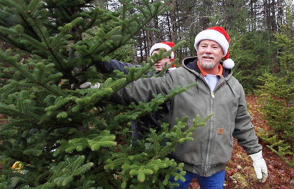 Greg Counts and son Matthew Counts cut a tree from Bluestone Nursery, a choose-and-cut Christmas tree farm in Camp Creek Saturday. The family has been getting their Christmas tree from Bluestone Nursery for 15 years. (Jenny Harnish/The Register-Herald)