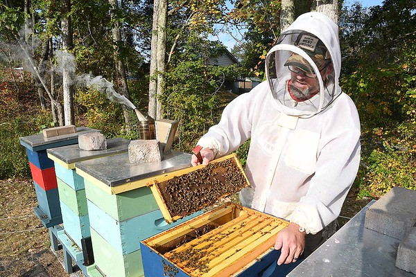 Jason Young working with his bee hives at his White Oak Bee Company.<br /> (Rick Barbero/The Register-Herald)