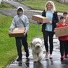 Raleigh County students who are brothers and sister from left, Nathiel, 14, Eden, 15, Andrew, 8, and Gabriel Honaker, 9, walk with their dog, Luke, back home from Park Middle School in Beckley after receiving free meals while school was out because of the coronavisus Thursday morning. Nearly 2,000 meals were provided by U.S. Foods, and another 2,000 meals were provided by the Historic Black Knight Municipal Park, giving each school site 150 meals to distribute. <br /> (Rick Barbero/The Register-Herald)