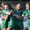 Charleston Catholic team members celebrate after scoring a goal in the first period during the semi-final match against Phillip Barbour during the girls state soccer tournament held at Paul Cline Memorial Sports Complex in Beckley Friday morning.<br /> (Rick Barbero/The Register-Herald)