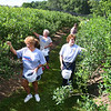 Michelle Austin, of Covington, Va., left, Ethel Smith and Cindy Quantz, both from Hot Springs, Va. picks blueberries at White Oak Farm in Renick.<br /> (Rick Barbero/The Register-Herald)