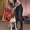 "(Brad Davis/The Register-Herald) Adoptable pooches take their turn walking the stage during the Hunks in Heels ""Fur"" Real fundraising event Friday night at the Beckley Moose Lodge."
