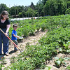 Magan Gonzalez, of Mount Nebo, works her community garden with her son, Thomas Malone, 3, at New Roots Community Farm on 167 Wolf Creek Road in Fayetteville. The farm provides 22 rolls about fifty feet long each for the community to plant their own gardens. Each rolls are provided to community members for $20. a roll.<br /> (Rick Barbero/The Register-Herald)