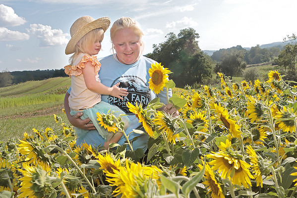 Lauren Perkins and Aena McClinic pose in the sunflowers on their family farm Perk Farm Organic Dairy in Frankford. Perkins has started hosting weekend activities at the farm including cow petting, vendors, sunflower picking and other activities for children and adults. Jenny Harnish/The Register-Herald
