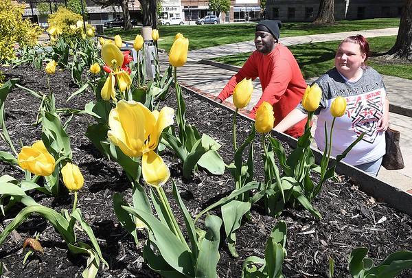 Derek and Amanda King enjoying the warm a sunny day viewing tulips and eating their lunch in Shoemaker Square in Beckley Monday afternoon, <br /> (Rick Barbero/The Register-Herald)