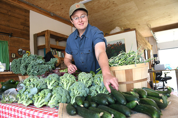 Skye Dexter, community food system coordinator, arranges produce at New Roots Community Farm on 167 Wolf Creek Road in Fayetteville. The Farm host an open farm market every Thursday from 1-6 p.m.<br /> (Rick Barbero/The Register-Herald)