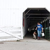 Emma Helmick, 15, of Ronceverte, leads her goat out of a barn at the State Fair of West Virginia in Fairlea Wednesday. Jenny Harnish/The Register-Herald