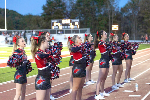 Liberty High School Cheerleaders Friday night against Wayne.<br /> Tina Laney/for The Register-Herald