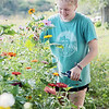 Kate Perkins picks flowers at Perk Farm Organic Dairy in Frankford Saturday. Perkins family has started hosting weekend activities at the farm including cow petting, vendors, sunflower picking and other activities for children and adults. Jenny Harnish/The Register-Herald