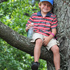 Charlie Davis, 6, son of Richie and Lisa Davis, of Radford Va. watches the third round of The Greenbrier Classic from a tree.<br /> Rick Barbero/The Register-Herald