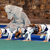 F. BRIAN FERGUSON/THE REGISTER-HERALD=Valley's mascot leads the cheerleaders in push-ups as they play Midland Trail during Friday evening action in Montgomery.