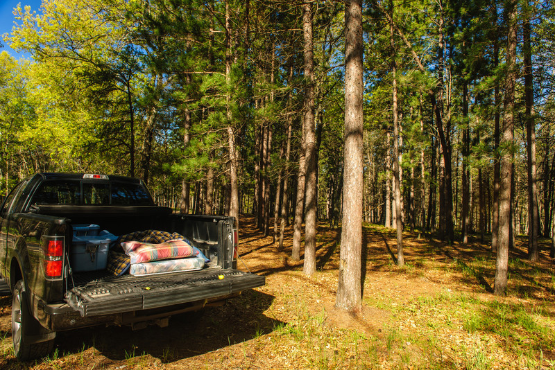 Camping out of the back of my truck, McKinley Trail camp, Michigan.