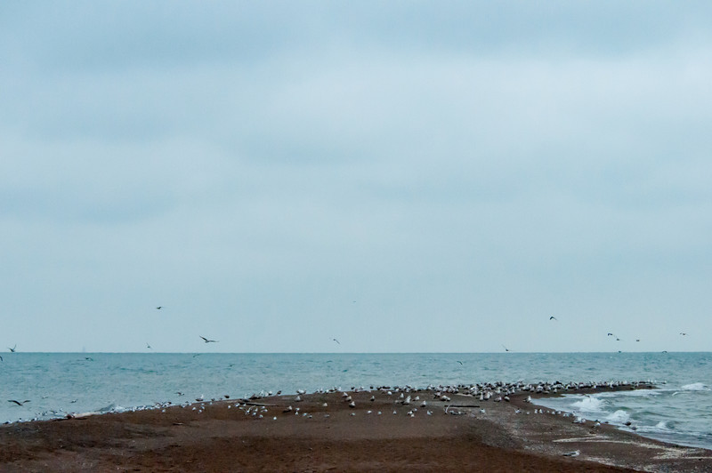 The tip of Point Pelee